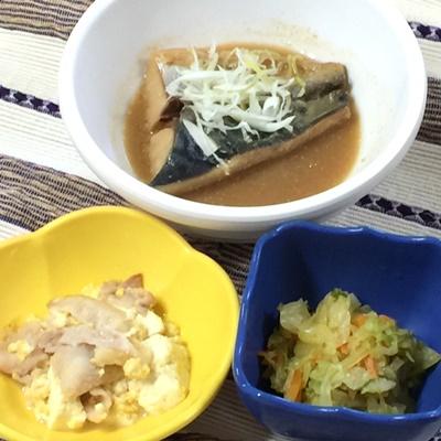 300609鯖の味噌煮ぶろぐ.jpg
