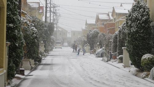 IMG_7448雪ぶろぐ.jpg